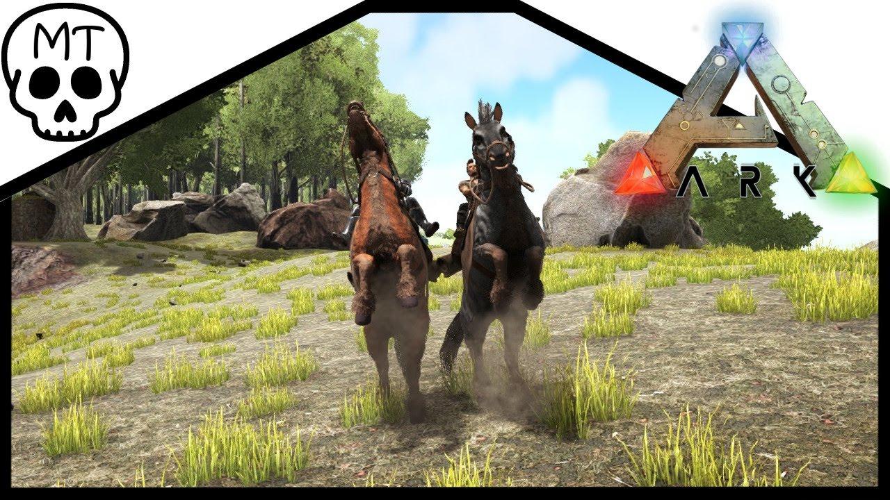 Equus Ark