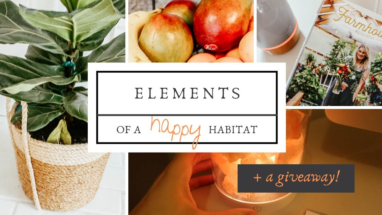 Elements of a Happy Habitat | How to Make Your Home Cozy & Fresh for the Summer | Levoit Salt Lamp