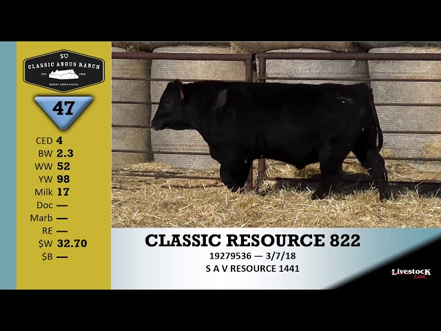 Classic Angus Ranch Lot 47