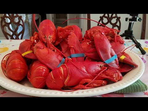 Super Lobsters!  Ăn mừng sinh nhật của YouTube/Quynh Như Lifestyle Channel