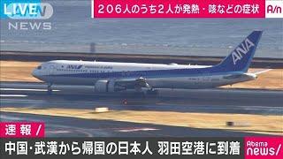 中国・武漢からの帰国便 羽田空港に到着(20/01/29)