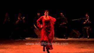 Smashing performance by Spanish flamenco dancer María Pagés