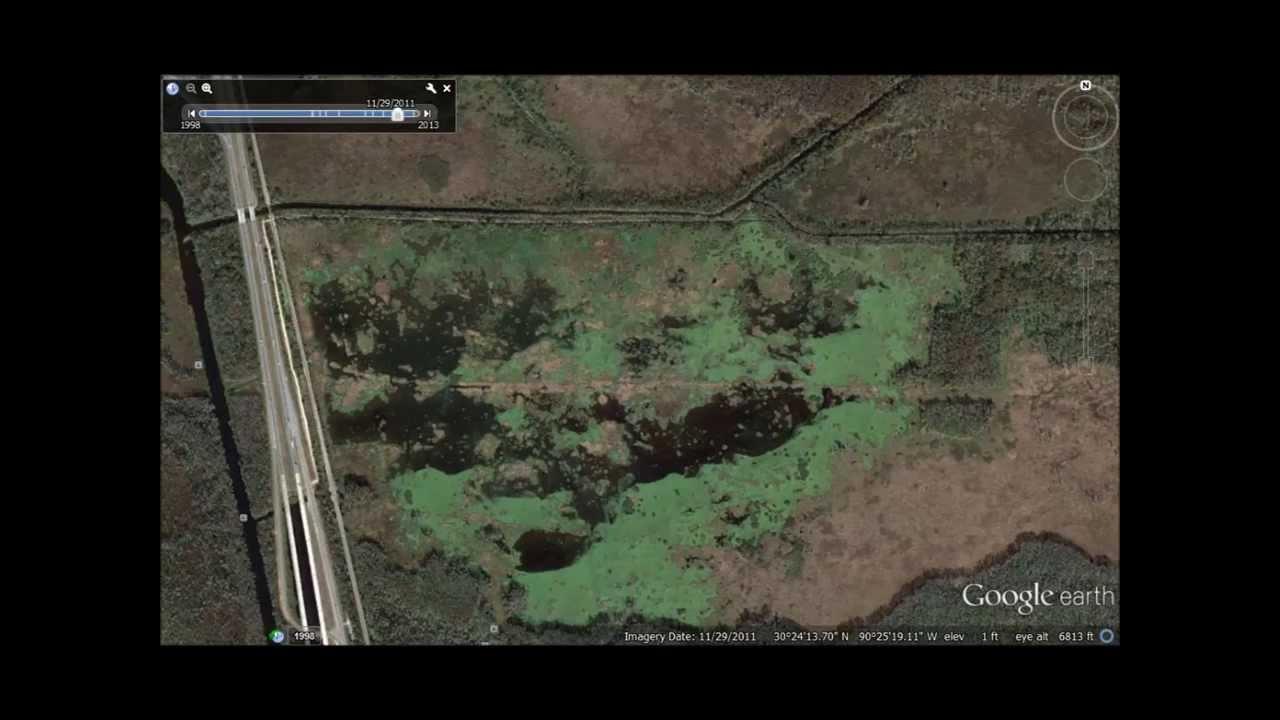 Nutrients Destroying Louisiana Marsh, Part II -Joyce WMA - YouTube