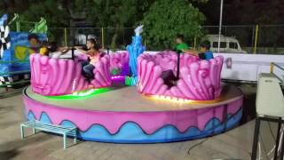 NIKOL AMUSEMENT PARK- Wave Rider