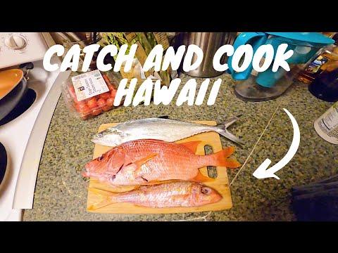Hawaii Spearfishing 2020 | Fishing For Dinner