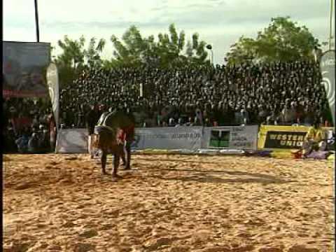Sabre National de Lutte traditionnelle du Niger - Tahoua 2009 - 2è Partie thumbnail