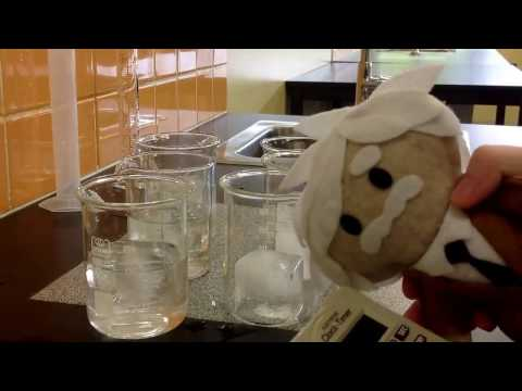 Ice investigation: Does ice melt faster in air or water?