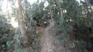 NEW Mountain Bike Trail in Mount Dora Florida