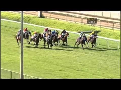 Race 7 - WAROA Lee Steere Stakes - 061110