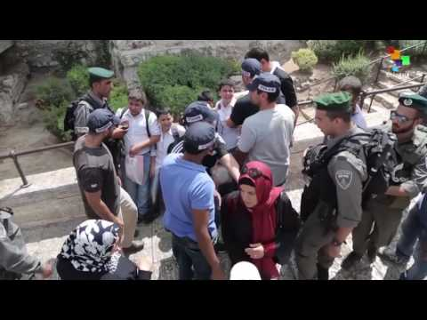 Palestine: 2016 Deadly Year For Palestinians In West Bank And Gaza Strip