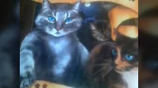 Коты Воители || миссия Огнезвёзда ||глава 2