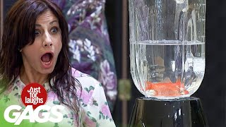 We Turn a Little Girl's Goldfish into a Delicious Smoothie