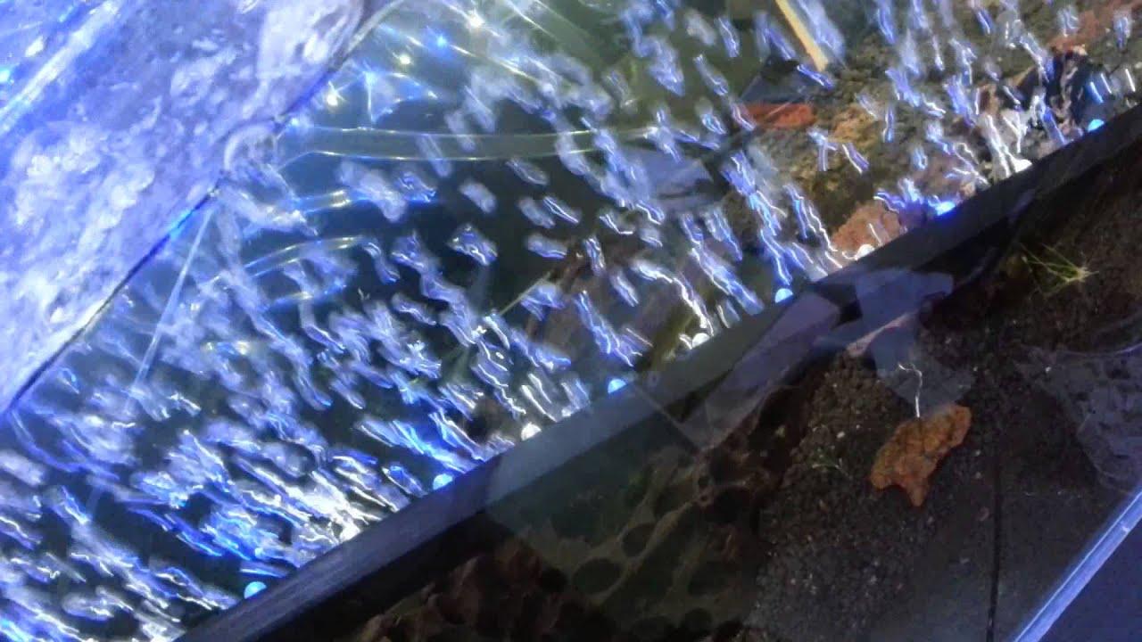 Air stone led light - YouTube