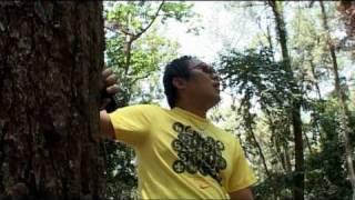 Jangan Kau Pergi - Apple Band Semarang & Waybe Music Indonesia