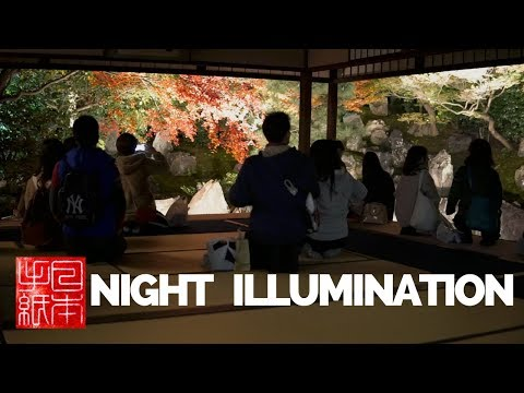 Autumn Night Illumination - Kyoto - Letters from Japan