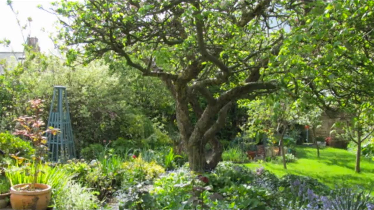 Planning A Kitchen Garden Planning A Fruit Garden How To Make A Low Maintenance Fruit