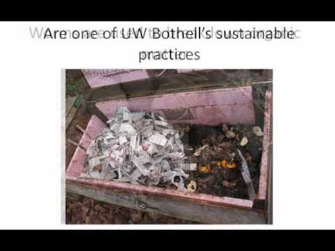UWB: Sustainable Campus