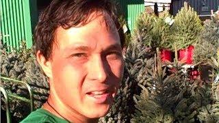 Eat Your Christmas Tree! Grow a Live Edible Xmas Tree