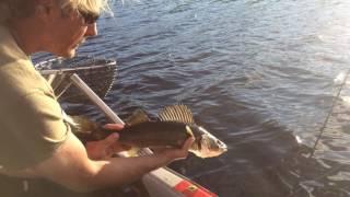 La pêche à la Pourvoirie Chalets Gouin