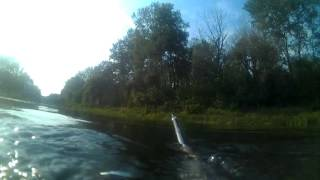 видео: Подводная охота на Днепре
