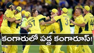 Australia Team Gets Serious Tweets From Senior | Oneindia Telugu