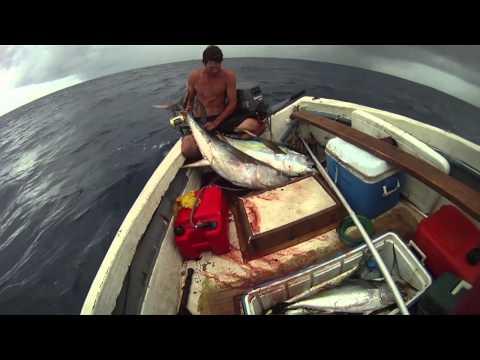 Antigua Yellowfin Fishing