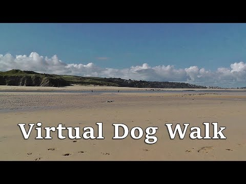 TV for Dogs : Virtual Dog Walk TV - Hayle to Hayle Beach