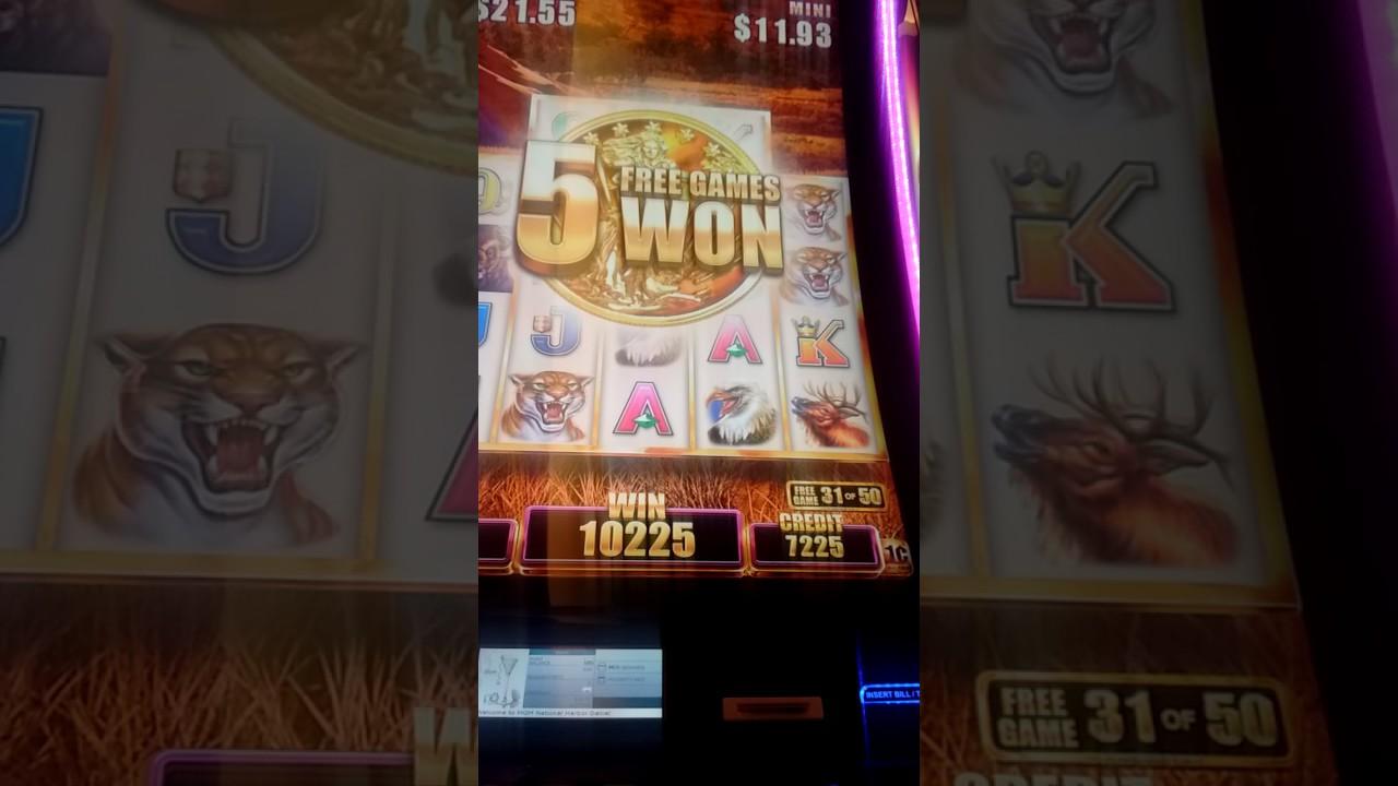 2 of 3  Buffalo @ MGM National Harbor BONUS, $3 75 MAX bet
