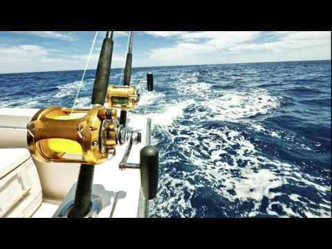 sleeping music for Adult the sound of fishing in sea