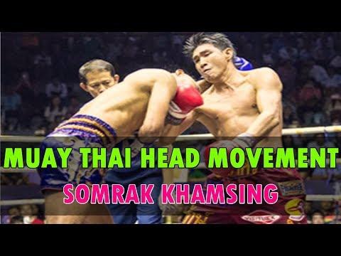 Somrak's Amazing Head Movement