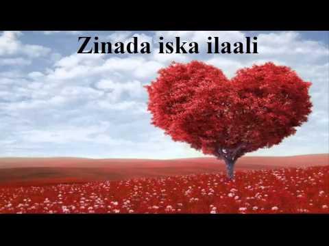 Muxadarado Zinada by Sh Xasan Ibraahim Ciise Xafiduhullaah