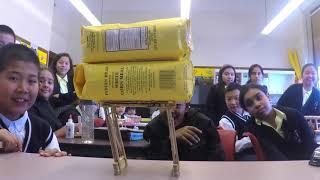 S.T.E.M. Popsicle Stick Bridge (5th & 6th Grade)