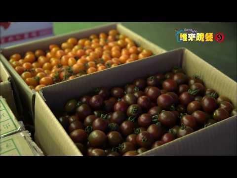 【誰來晚餐916】果菜市場世間情|Romance in the Fruit Market _ Guess Who Season 9 Episode 16