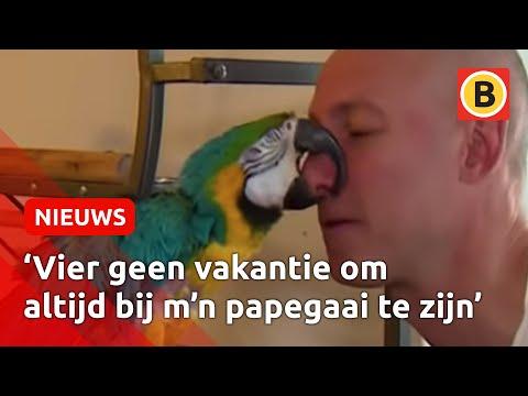 Papegaai Ouwe Jan is tegen de 100 jaar