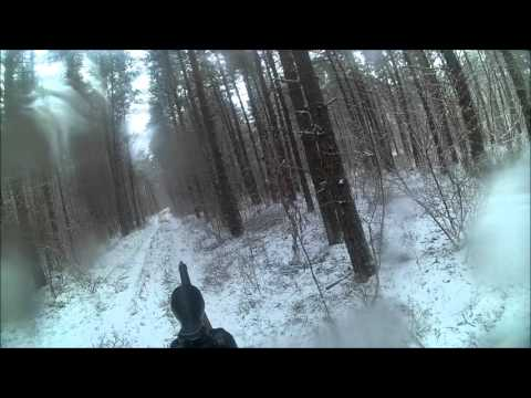 Metssea Jaht (wild Boar Hunting In Estonia)