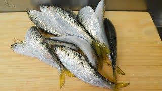 コハダは出世魚でシンコ、コハダ、ナカズミ、コノシロと呼び名が変わり...