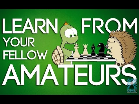 Learn From Your Fellow Amateurs (and their mistakes!) - NM Dana Mackenzie