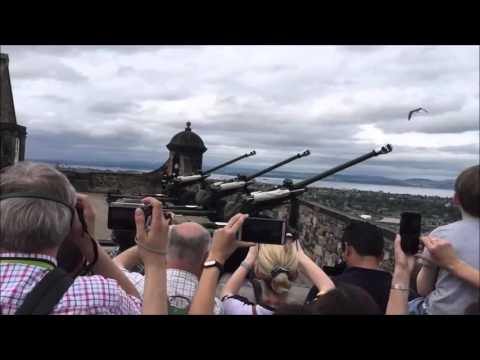 Bird almost hit by a shot from a cannon - Видео онлайн
