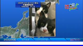 SOLiVE24 (SOLiVE ミッドナイト) 2017-10-24 04:30:30〜 thumbnail