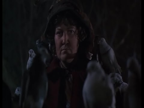 Home Alone 2: Lost in New York OST 16. Appearance of the Pigeon Lady