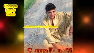 Best Funny Collection Video / Adeel Champa Best Funny Collection Video 2018