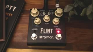 Strymon Flint Demo (The Reason I Sold My Strymon BigSky)