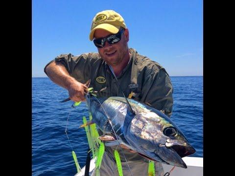 Northeast Yellowfin Tuna Tips with SI Squid Flexi-Bars