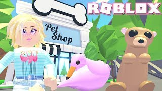 Pink Flamingo! Roblox: 🦁NEW PETS!🦁 Adopt Me