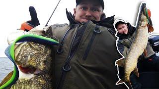 ТРОФЕЙНЫЕ ЩУКИ озера Нарочь осенняя ловля на крупные силиконовые приманки в межсезонье