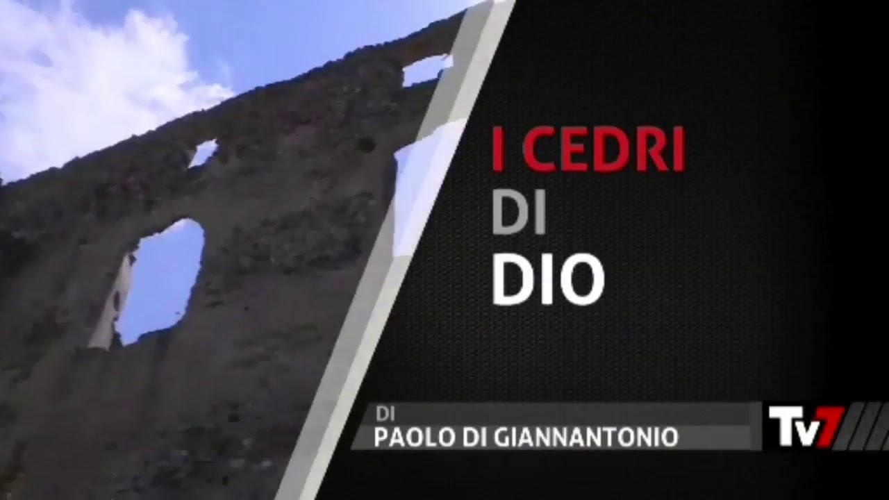 I Cedri di Dio - di Paolo Di Giannantonio