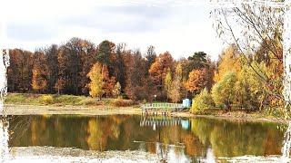 Смотреть видео Бабаевский пруд  - Москва Осенний пейзаж у меня в телефоне! онлайн