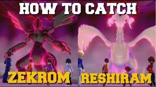 HOW TO CATCH ZEKROM & RESHIRAM POKEMON SWORD AND SHIELD CROWN TUNDRA (ZEKROM LOCATION)