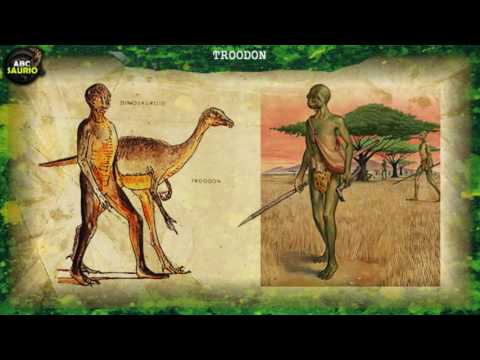 Troodon | ABCsaurio