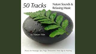 Zen & Nature (Japanese Flute, Nature & Keyboards for Massage)
